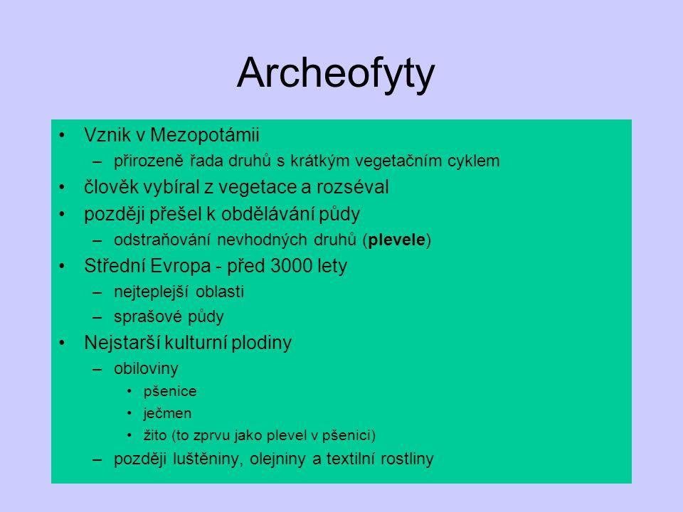 Archeofyty Vznik v Mezopotámii člověk vybíral z vegetace a rozséval