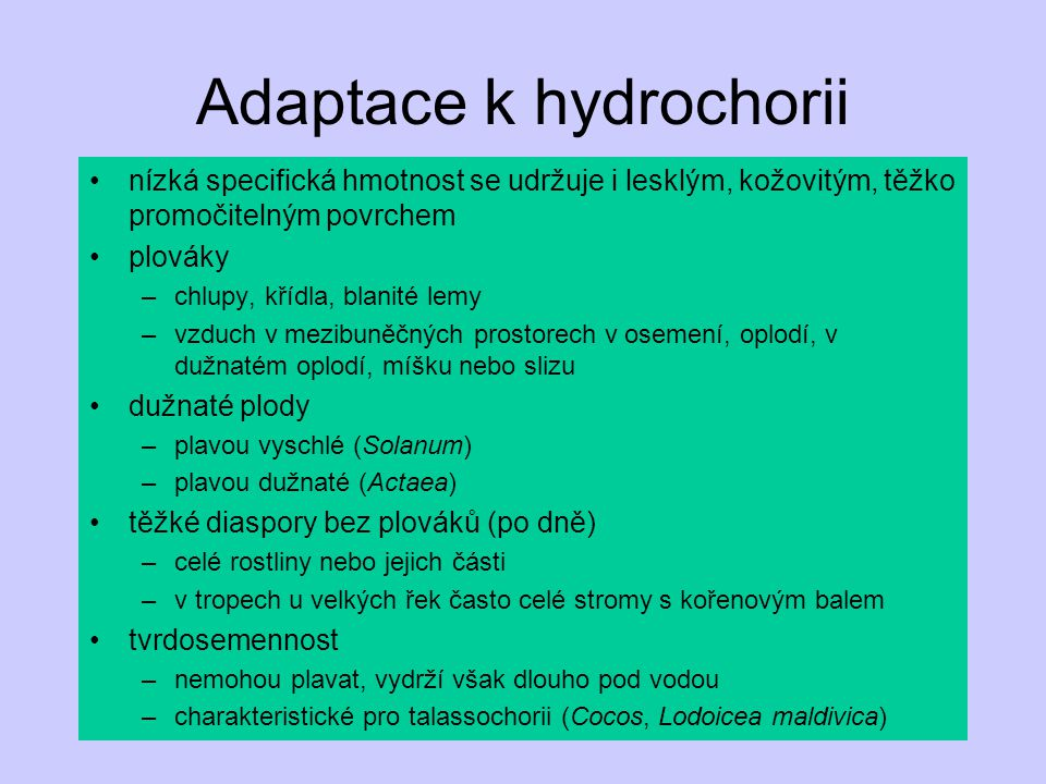 Adaptace k hydrochorii