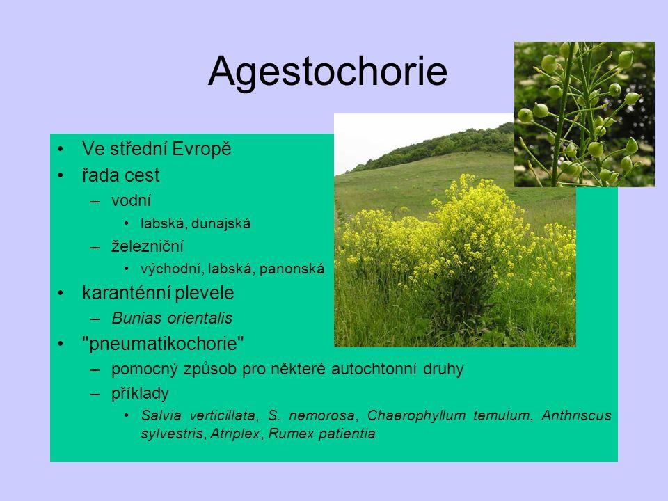 Agestochorie Ve střední Evropě řada cest karanténní plevele