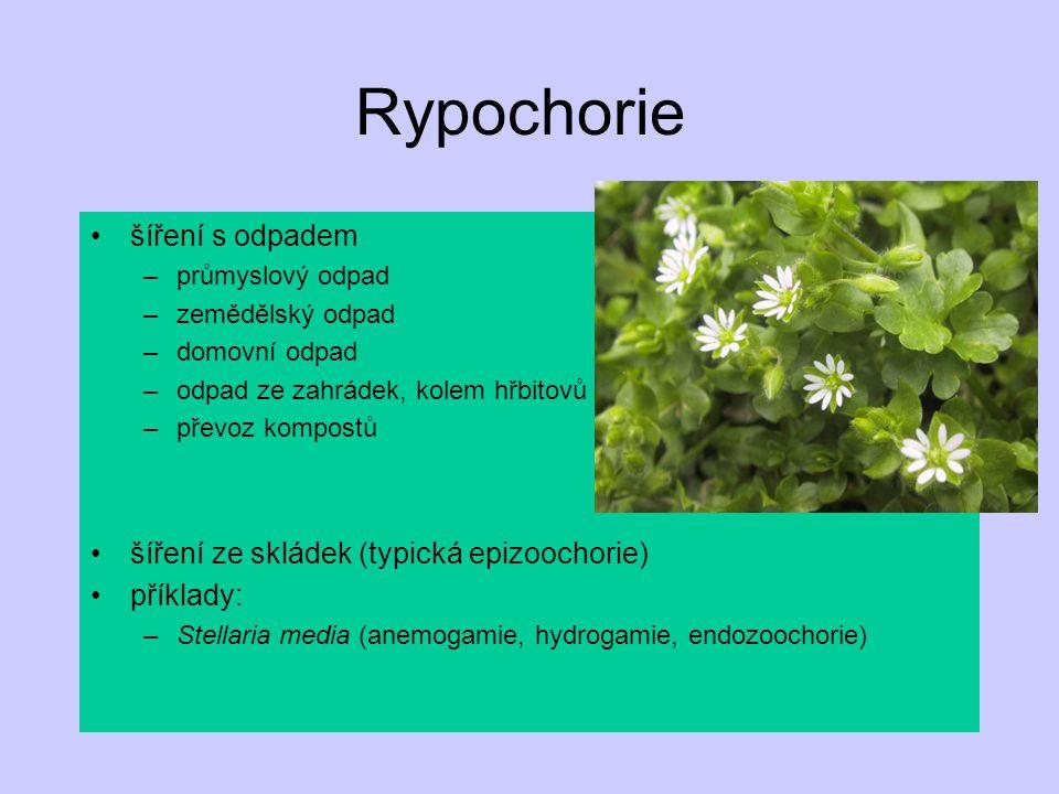 Rypochorie šíření s odpadem šíření ze skládek (typická epizoochorie)