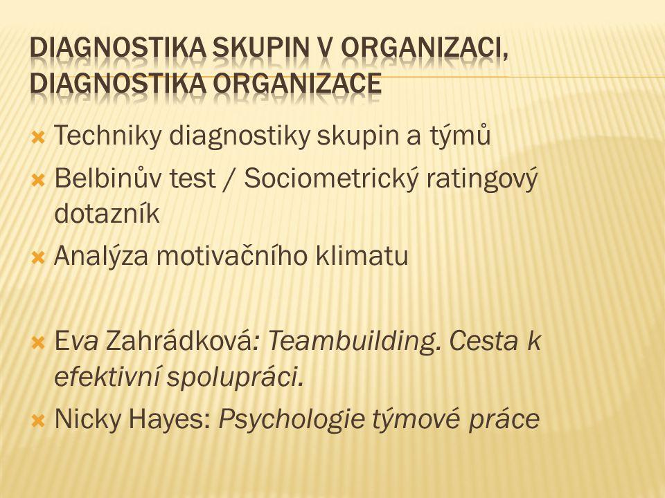 Diagnostika skupin v organizaci, diagnostika organizace