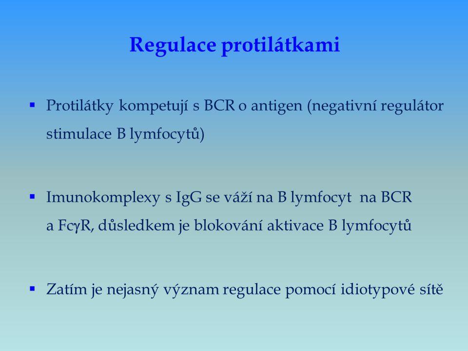 Regulace protilátkami