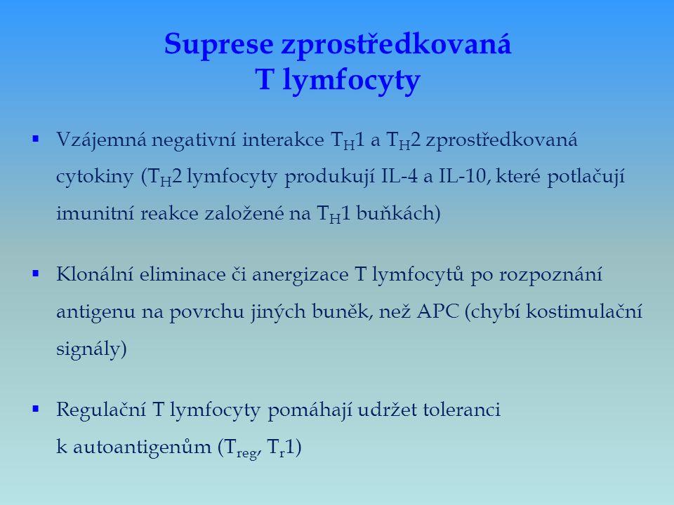Suprese zprostředkovaná T lymfocyty