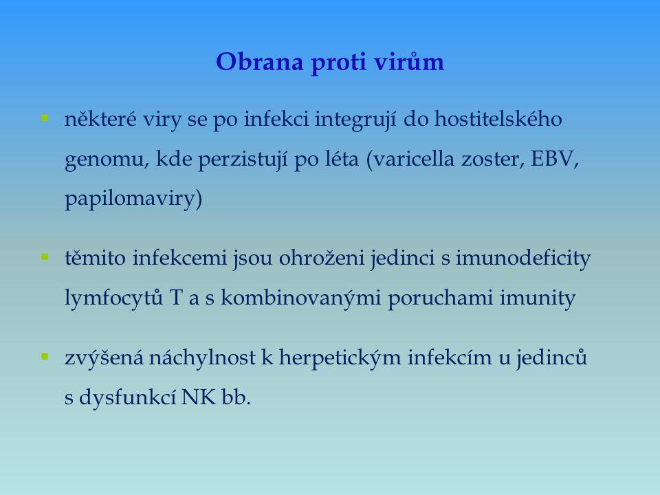 Obrana proti virům některé viry se po infekci integrují do hostitelského genomu, kde perzistují po léta (varicella zoster, EBV, papilomaviry)