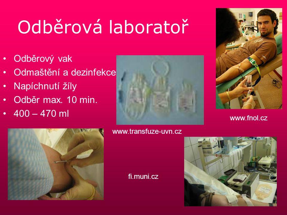 Odběrová laboratoř Odběrový vak Odmaštění a dezinfekce Napíchnutí žíly