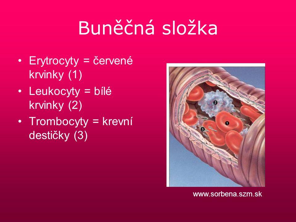 Buněčná složka Erytrocyty = červené krvinky (1)