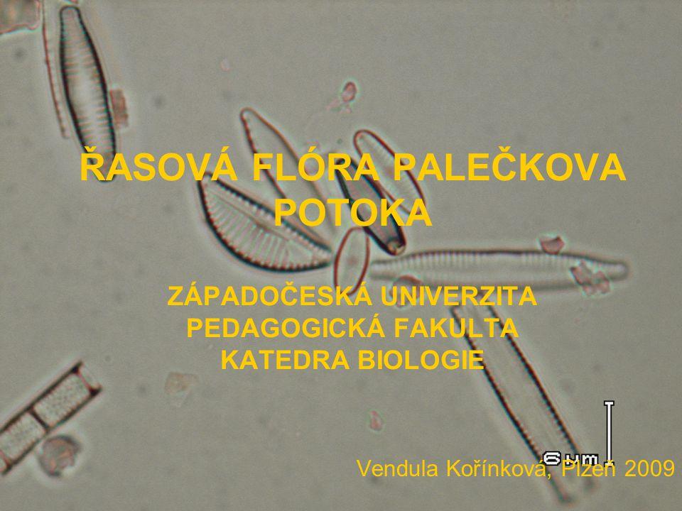 Vendula Kořínková, Plzeň 2009