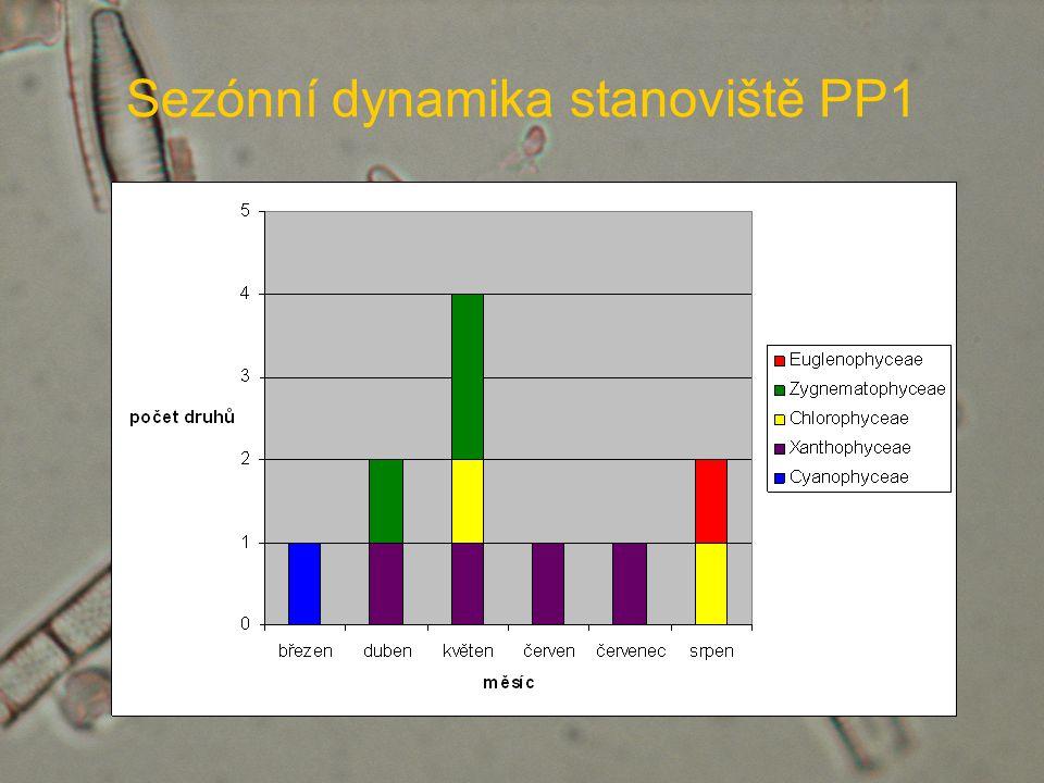 Sezónní dynamika stanoviště PP1