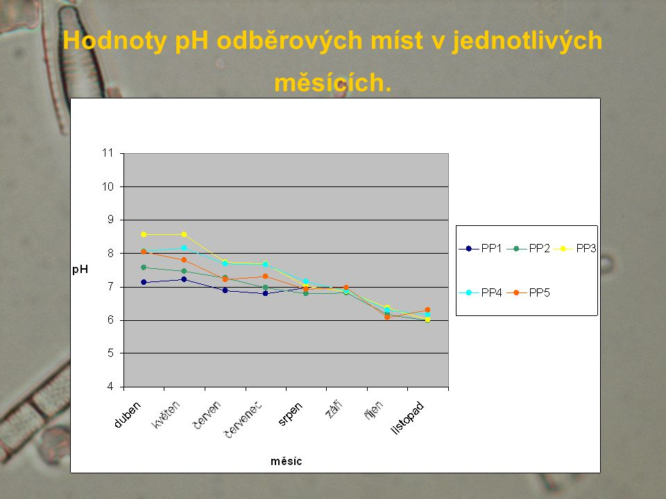 Hodnoty pH odběrových míst v jednotlivých měsících.