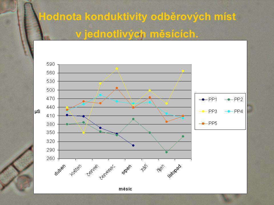 Hodnota konduktivity odběrových míst v jednotlivých měsících.