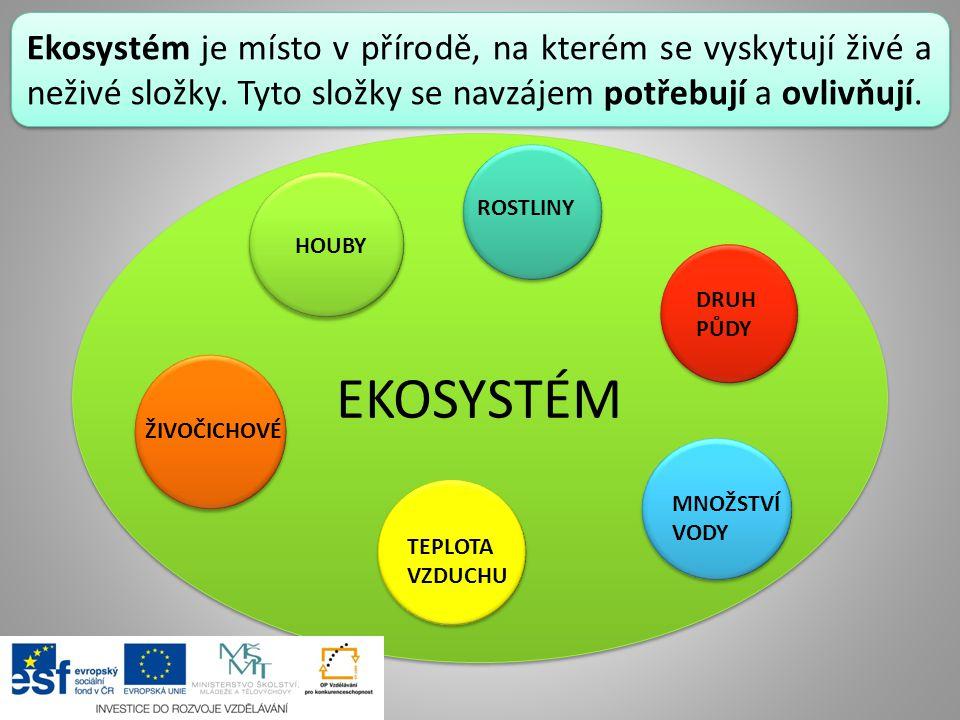 Ekosystém je místo v přírodě, na kterém se vyskytují živé a neživé složky. Tyto složky se navzájem potřebují a ovlivňují.