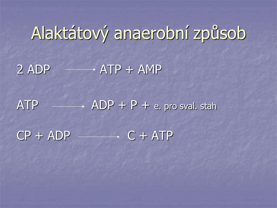Alaktátový anaerobní způsob