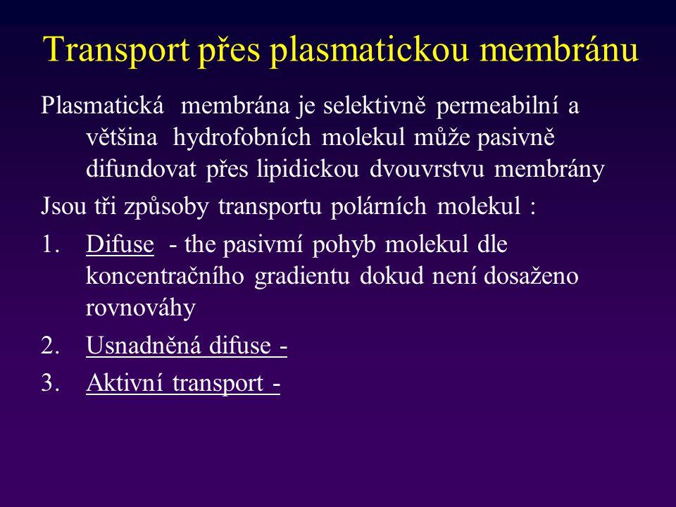 Transport přes plasmatickou membránu