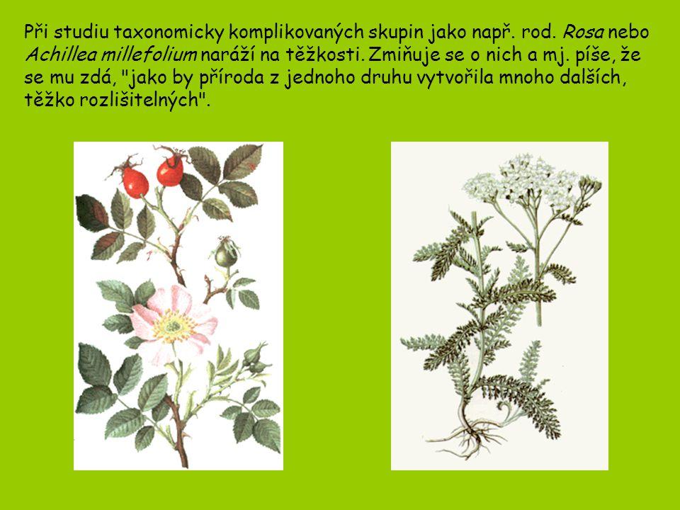 Při studiu taxonomicky komplikovaných skupin jako např. rod