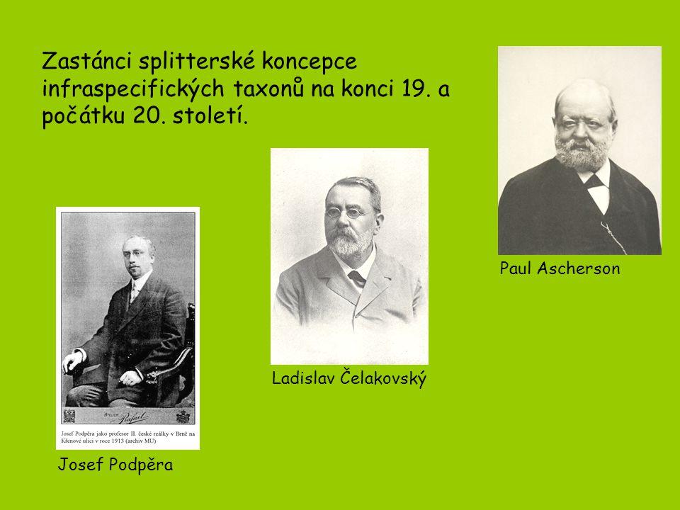 Zastánci splitterské koncepce infraspecifických taxonů na konci 19