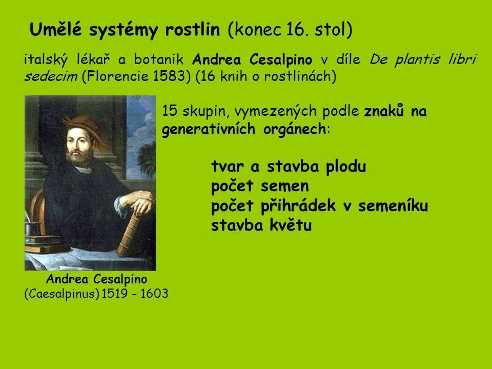 Andrea Cesalpino (Caesalpinus) 1519 - 1603