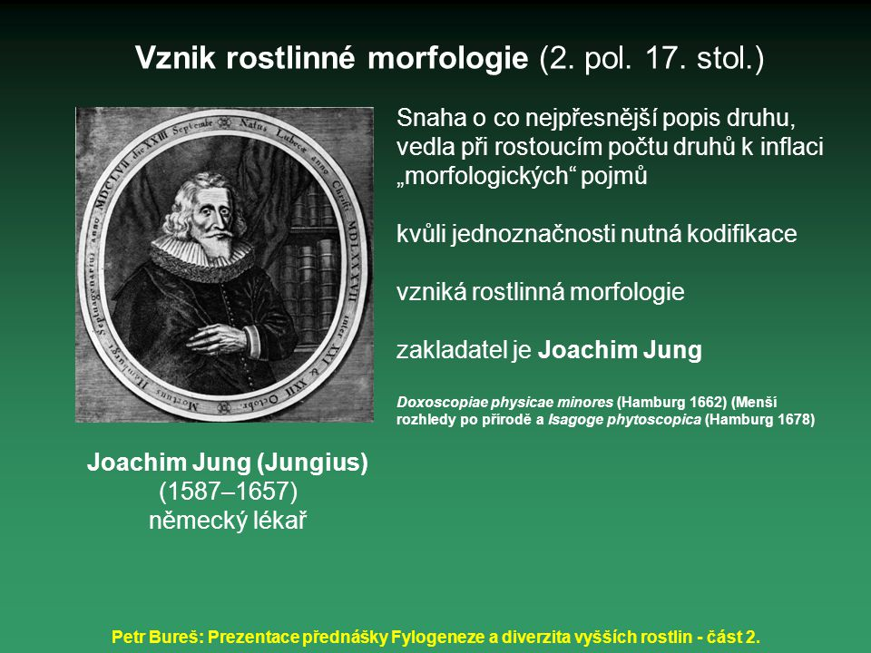 Vznik rostlinné morfologie (2. pol. 17. stol.)