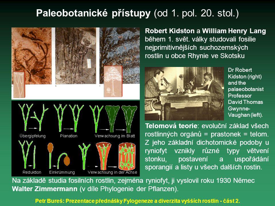 Paleobotanické přístupy (od 1. pol. 20. stol.)