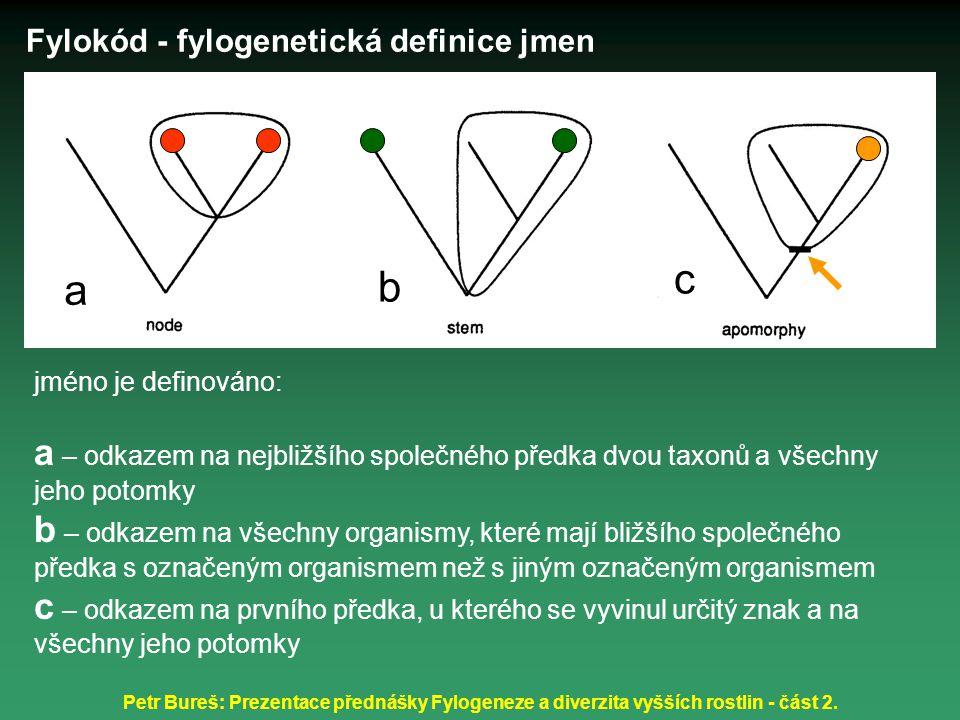 Fylokód - fylogenetická definice jmen