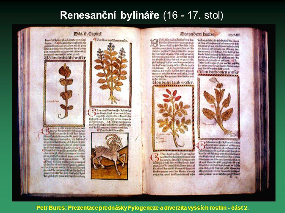Renesanční bylináře (16 - 17. stol)