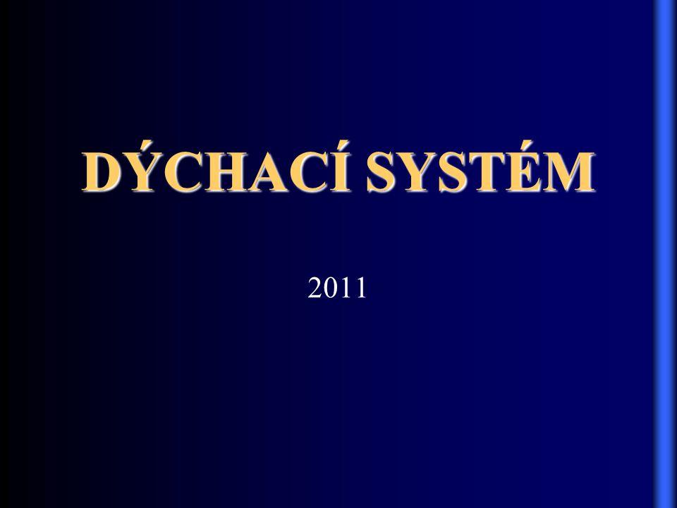 2011 DÝCHACÍ SYSTÉM