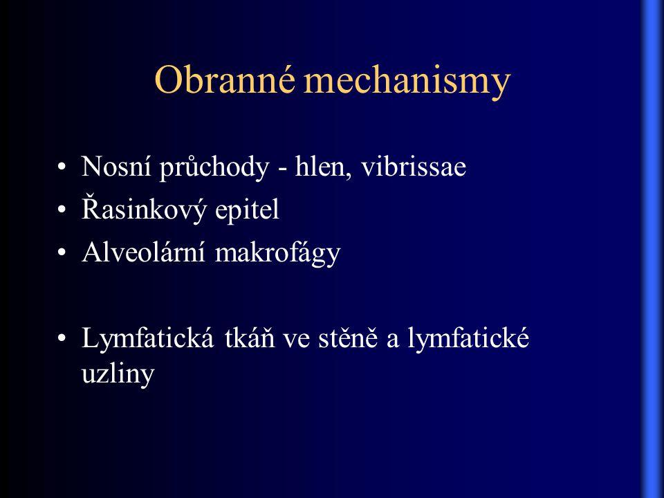 Obranné mechanismy Nosní průchody - hlen, vibrissae Řasinkový epitel