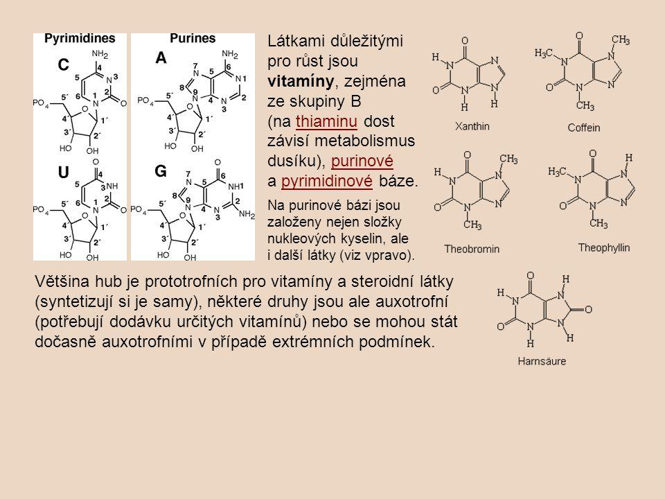 Látkami důležitými pro růst jsou vitamíny, zejména ze skupiny B (na thiaminu dost závisí metabolismus dusíku), purinové a pyrimidinové báze.