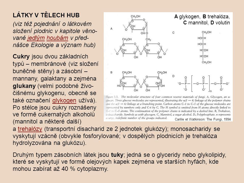 LÁTKY V TĚLECH HUB (viz též pojednání o látkovém složení plodnic v kapitole věno-vané jedlým houbám v před-nášce Ekologie a význam hub)