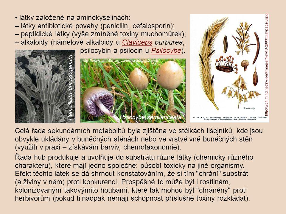 psilocybin a psilocin u Psilocybe).