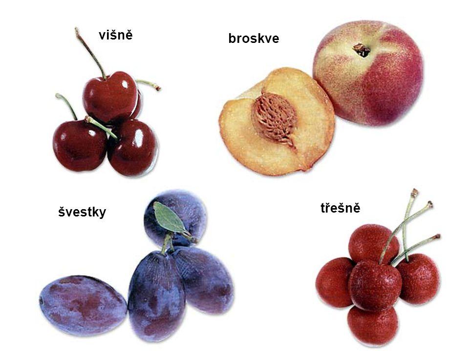 višně broskve třešně švestky