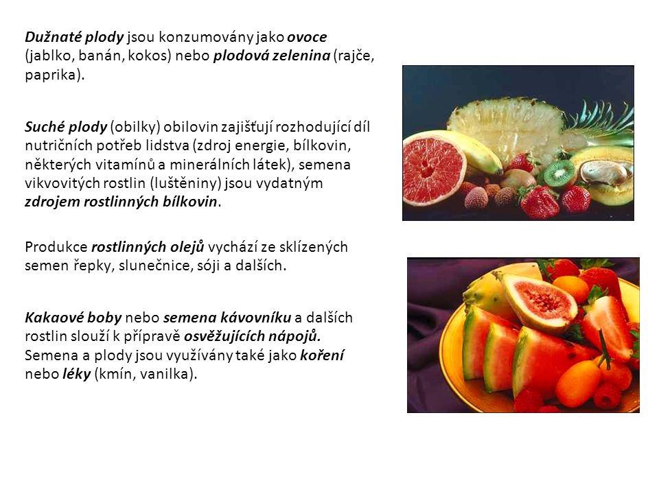 Dužnaté plody jsou konzumovány jako ovoce (jablko, banán, kokos) nebo plodová zelenina (rajče, paprika).