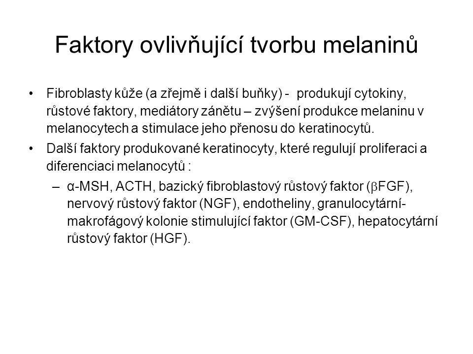 Faktory ovlivňující tvorbu melaninů