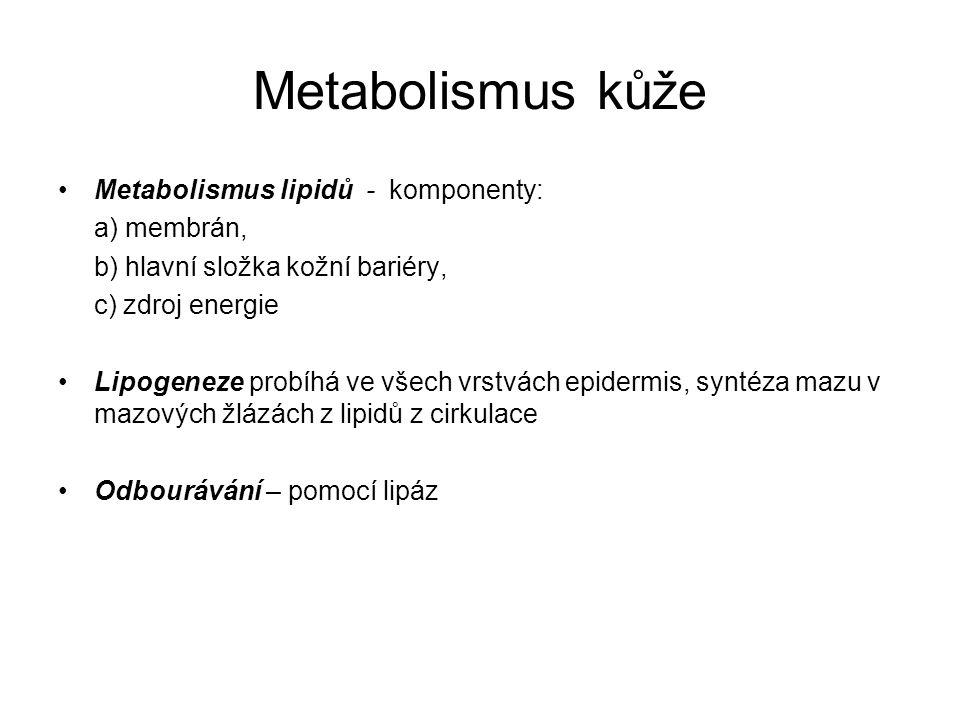 Metabolismus kůže Metabolismus lipidů - komponenty: a) membrán,