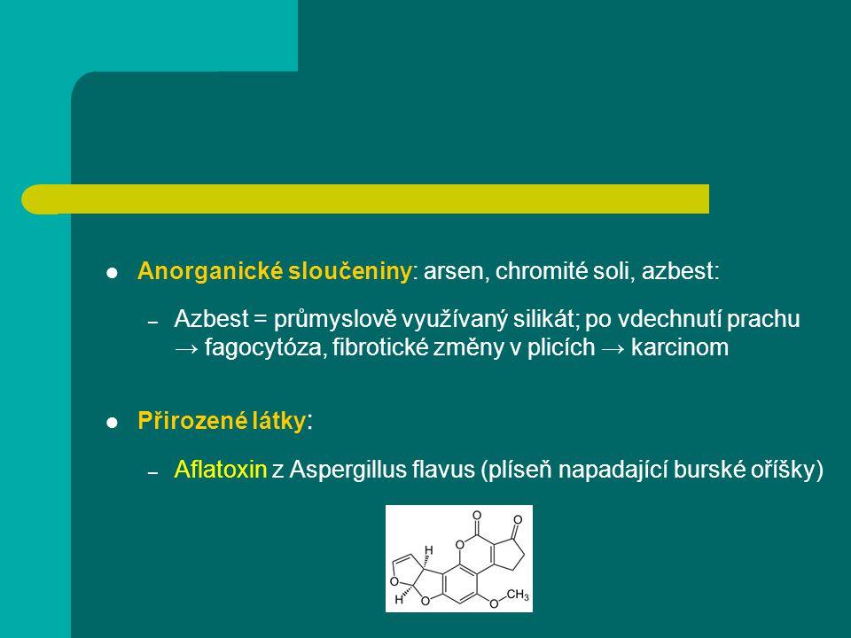 Anorganické sloučeniny: arsen, chromité soli, azbest:
