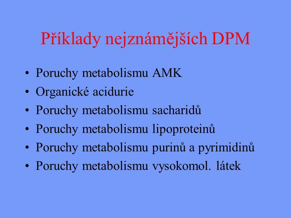 Příklady nejznámějších DPM