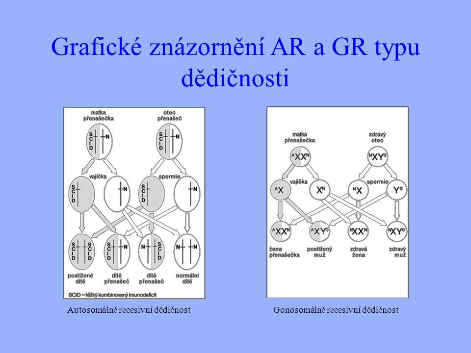 Grafické znázornění AR a GR typu dědičnosti