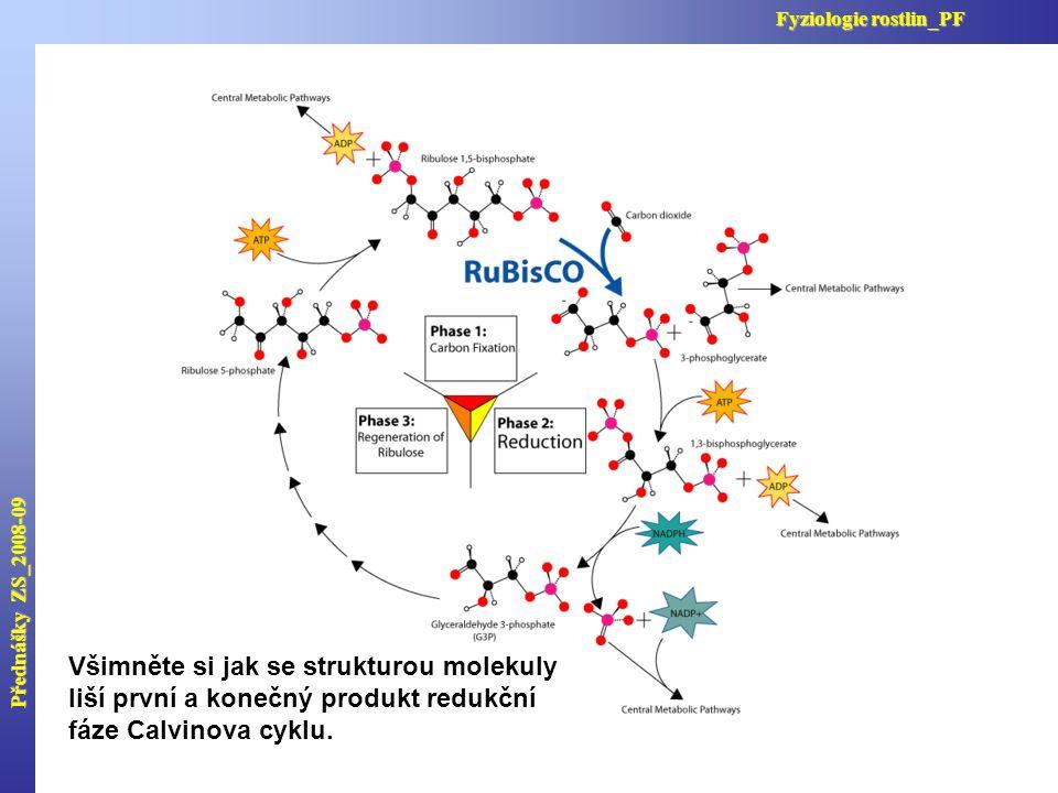 Všimněte si jak se strukturou molekuly