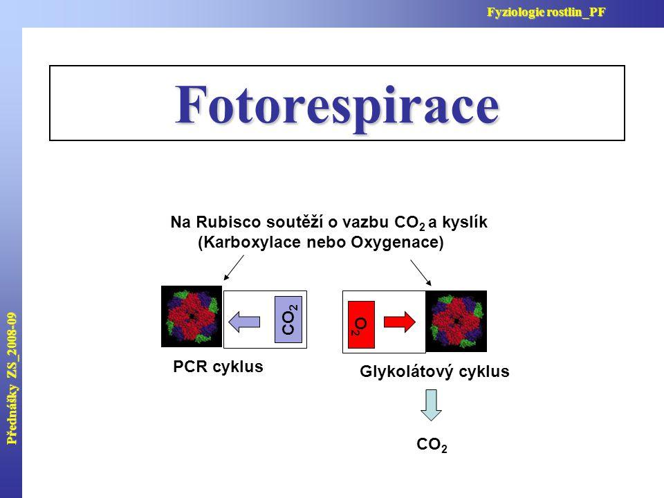 Fotorespirace Na Rubisco soutěží o vazbu CO2 a kyslík
