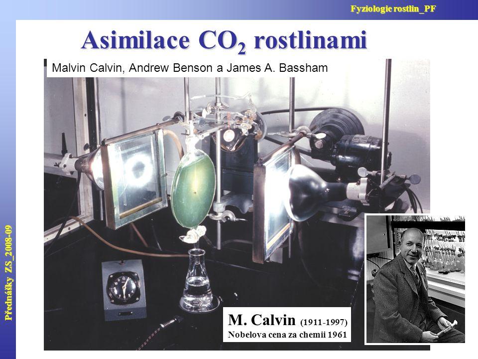 Asimilace CO2 rostlinami