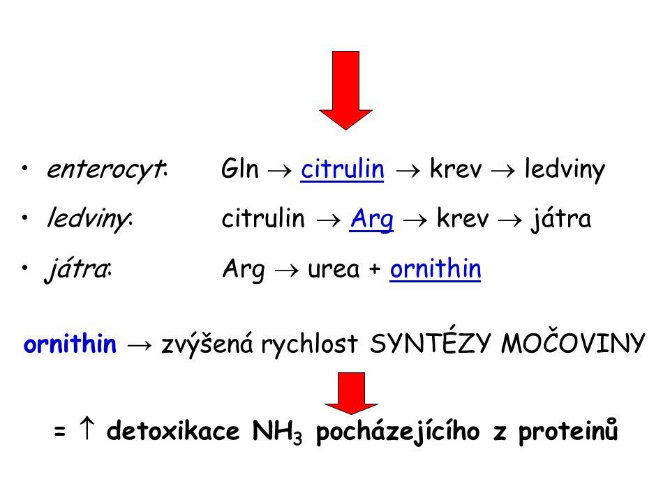 =  detoxikace NH3 pocházejícího z proteinů
