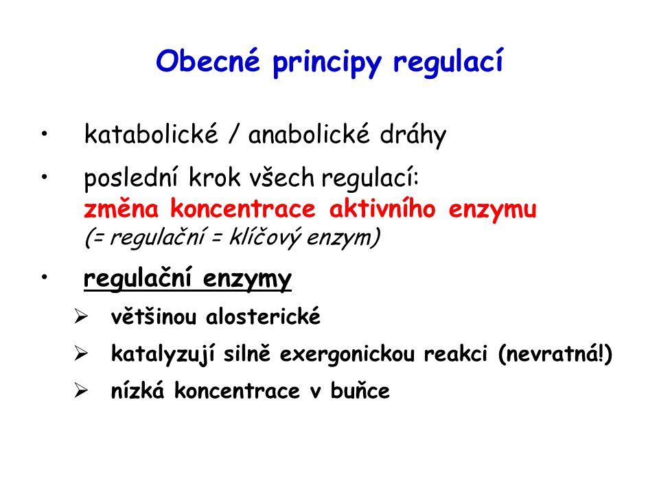 Obecné principy regulací