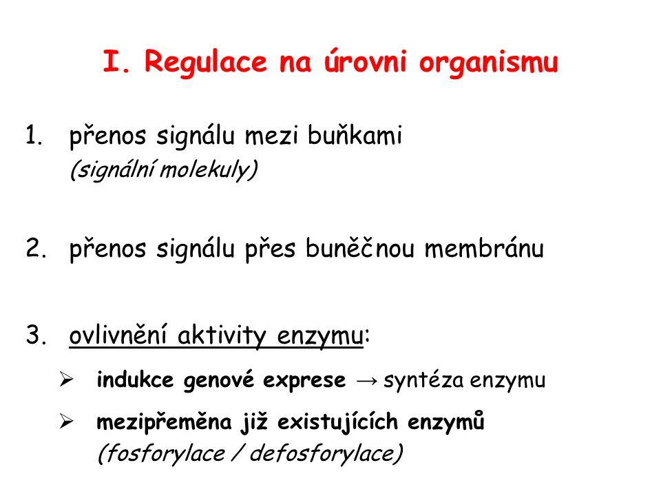 I. Regulace na úrovni organismu