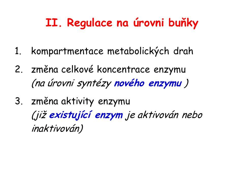 II. Regulace na úrovni buňky