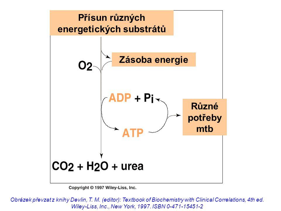 Přísun různých energetických substrátů