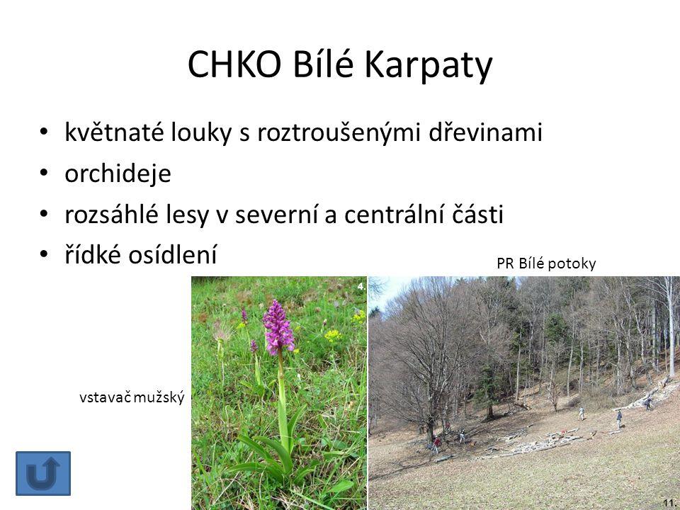 CHKO Bílé Karpaty květnaté louky s roztroušenými dřevinami orchideje