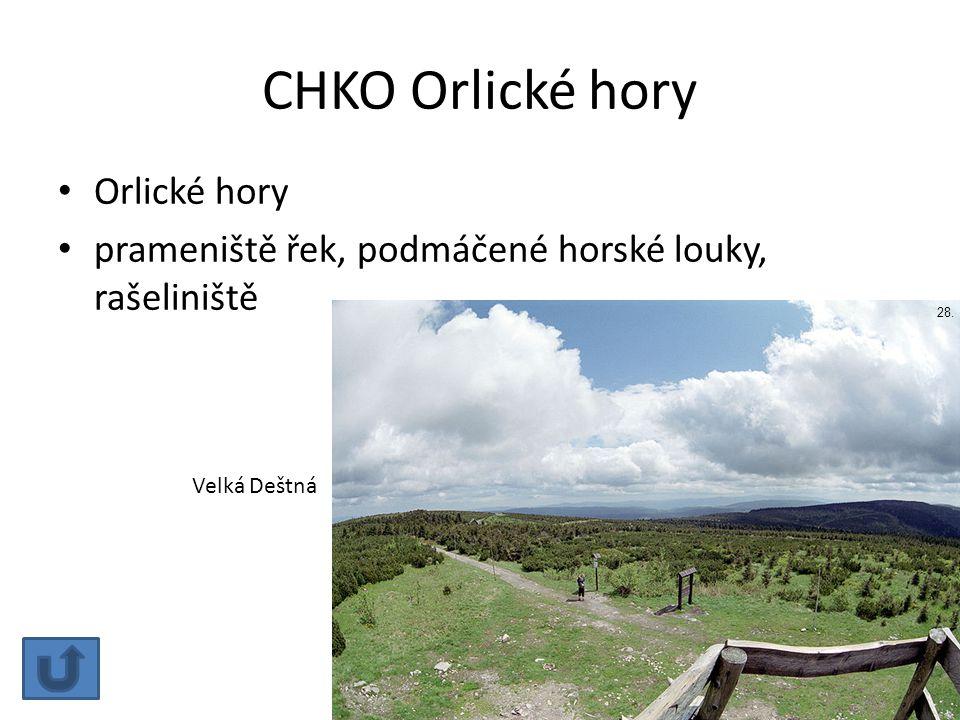 CHKO Orlické hory Orlické hory