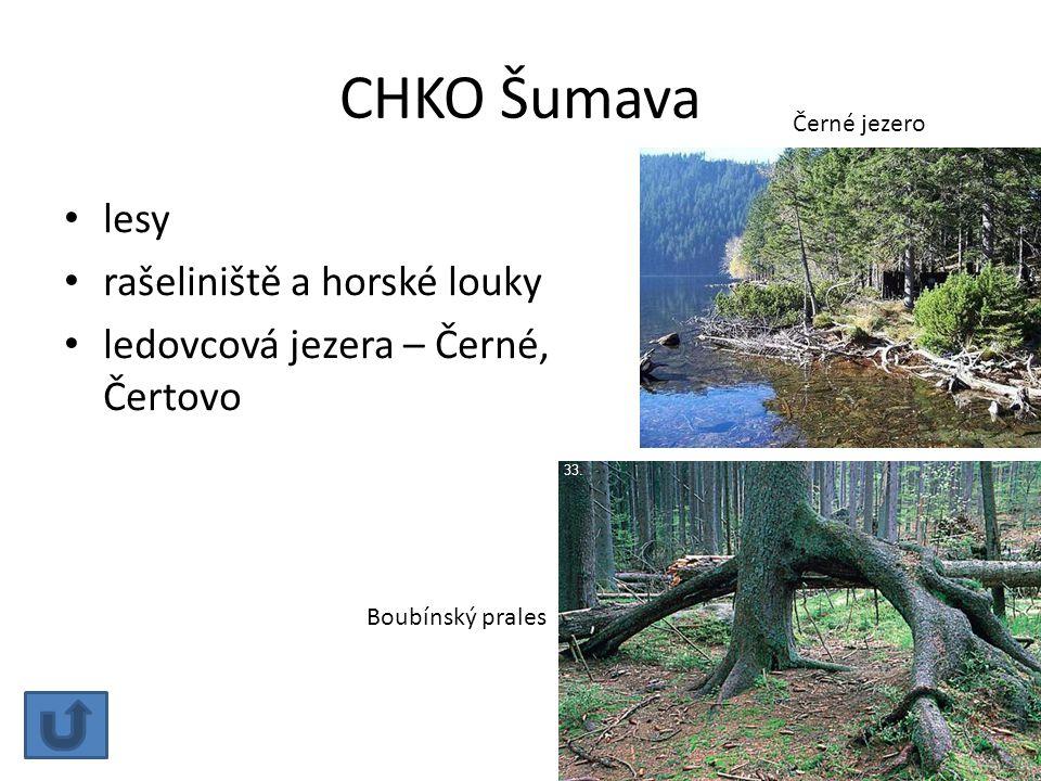 CHKO Šumava lesy rašeliniště a horské louky