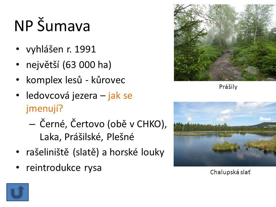 NP Šumava vyhlášen r. 1991 největší (63 000 ha) komplex lesů - kůrovec