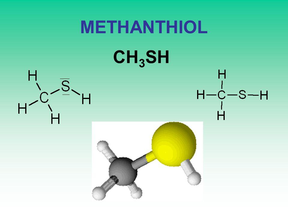 METHANTHIOL CH3SH