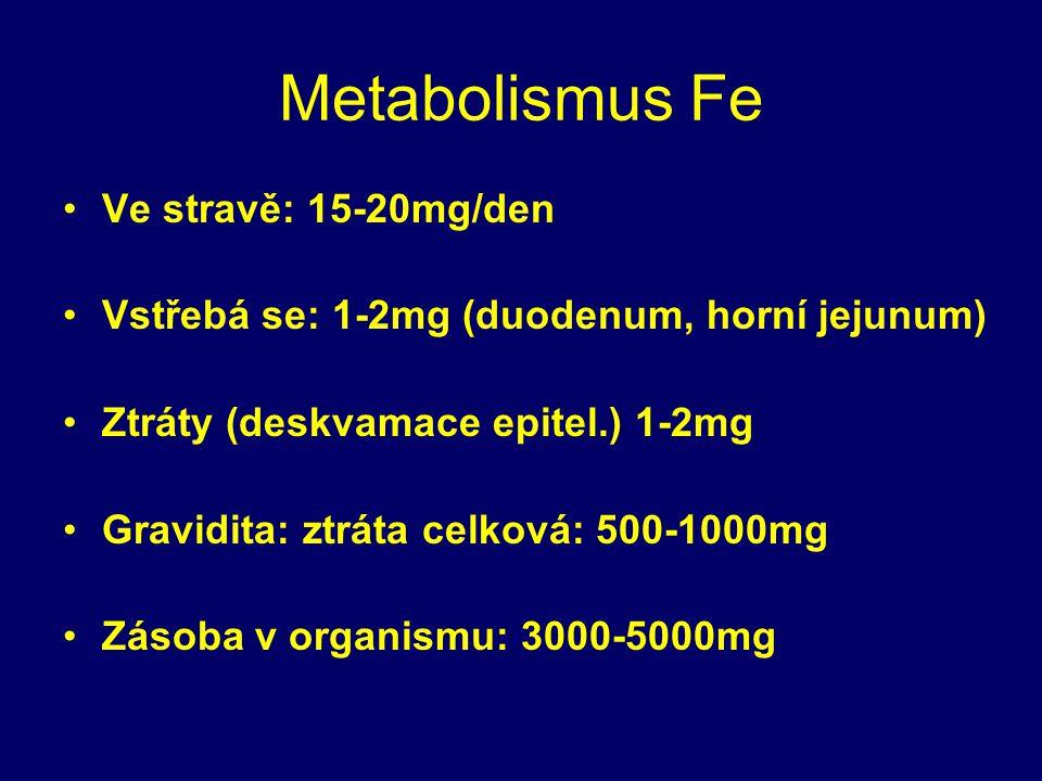 Metabolismus Fe Ve stravě: 15-20mg/den